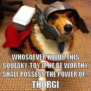 Not Thorgy Thor.